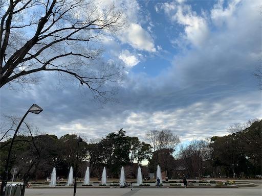 f:id:happyunagi-yuko:20210127202716j:image