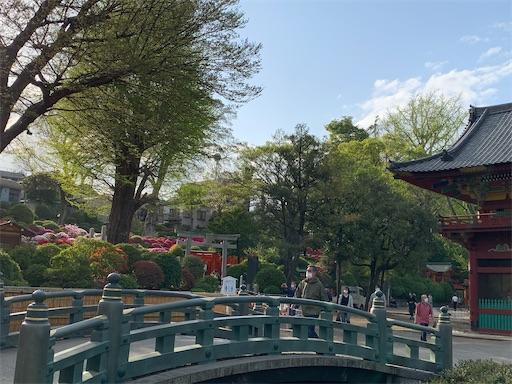 f:id:happyunagi-yuko:20210404120605j:image