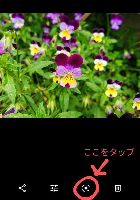 f:id:happyupon:20200519111032j:image