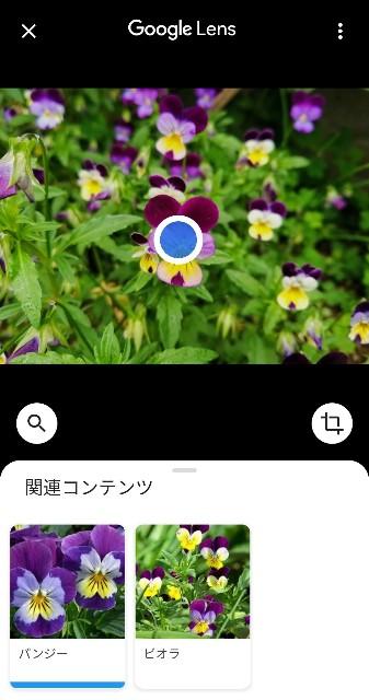 f:id:happyupon:20200519111041j:image