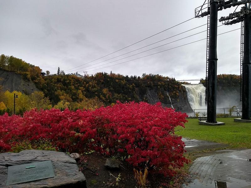 モンモランシーの滝(Montmorency Fall)