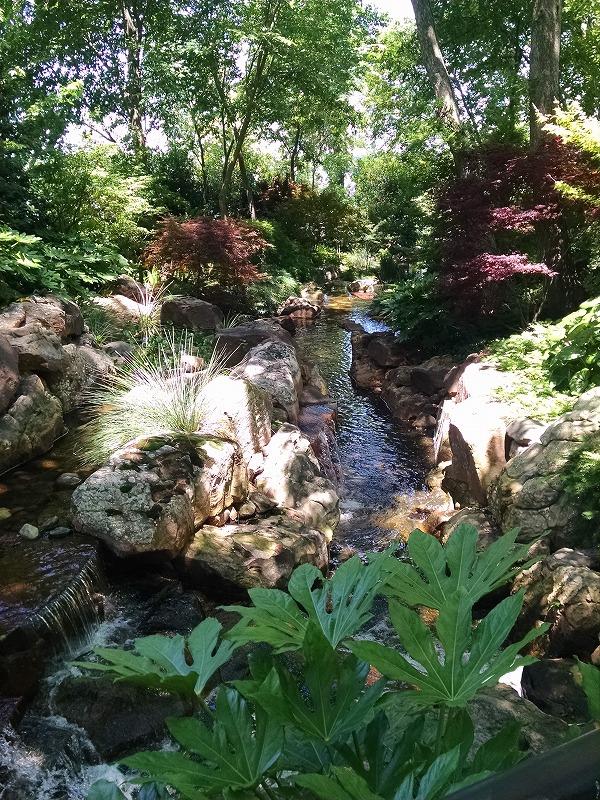 ダラス樹木園・植物園