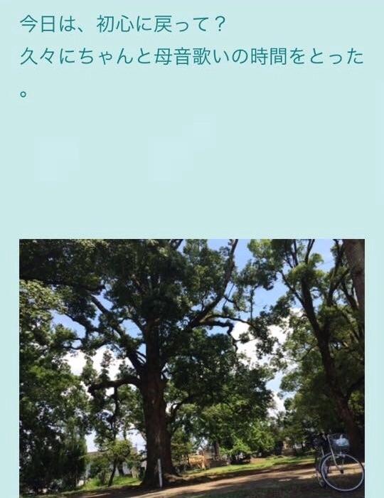 f:id:hara-artist_reiko:20161027000606j:image