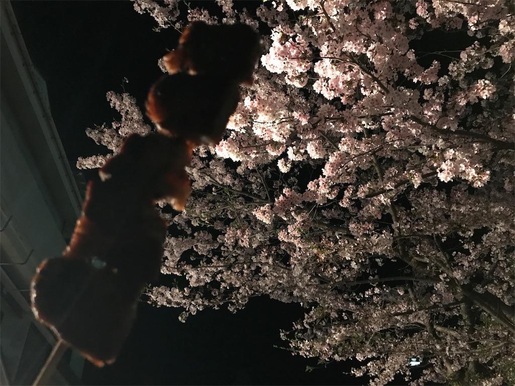 f:id:hara-artist_reiko:20170414020815j:image