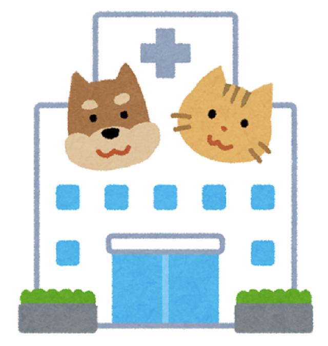 動物病院の画像