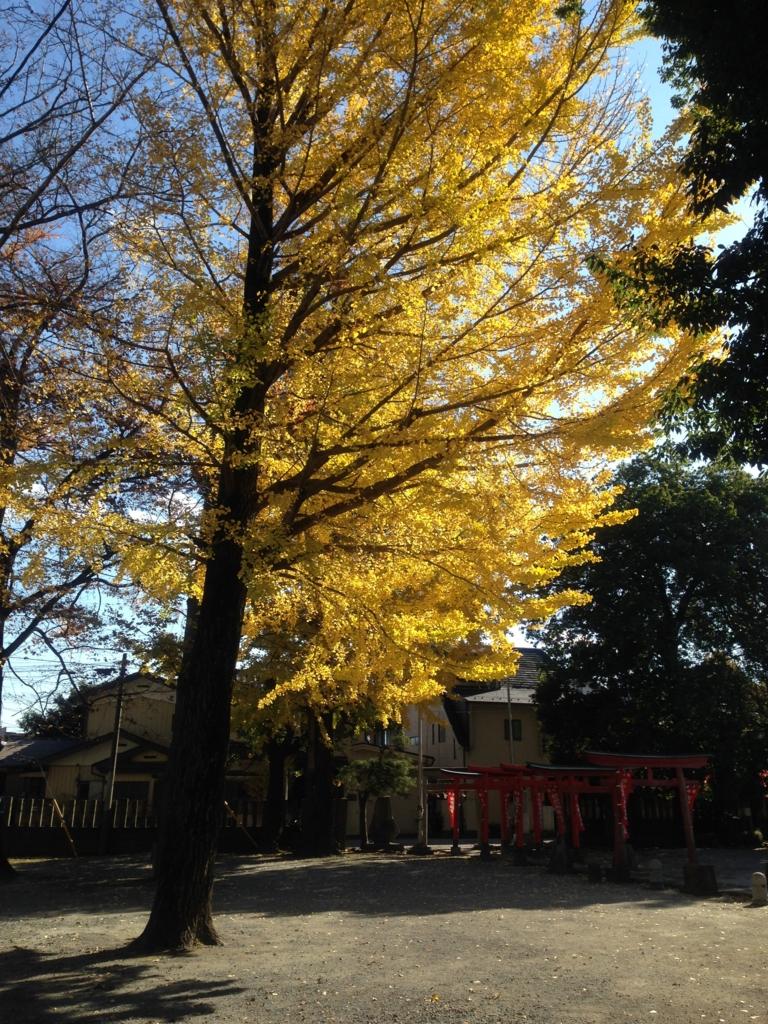 f:id:haradamasaru:20161129125510j:plain