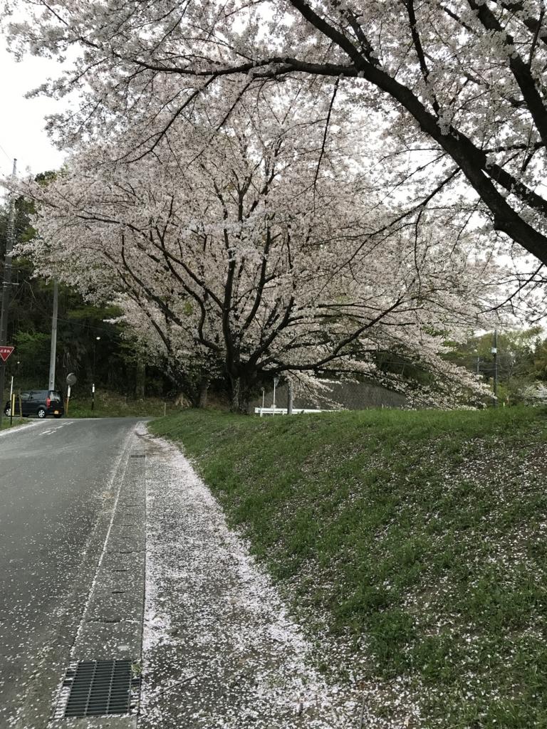 f:id:haradamasaru:20180401211435j:plain