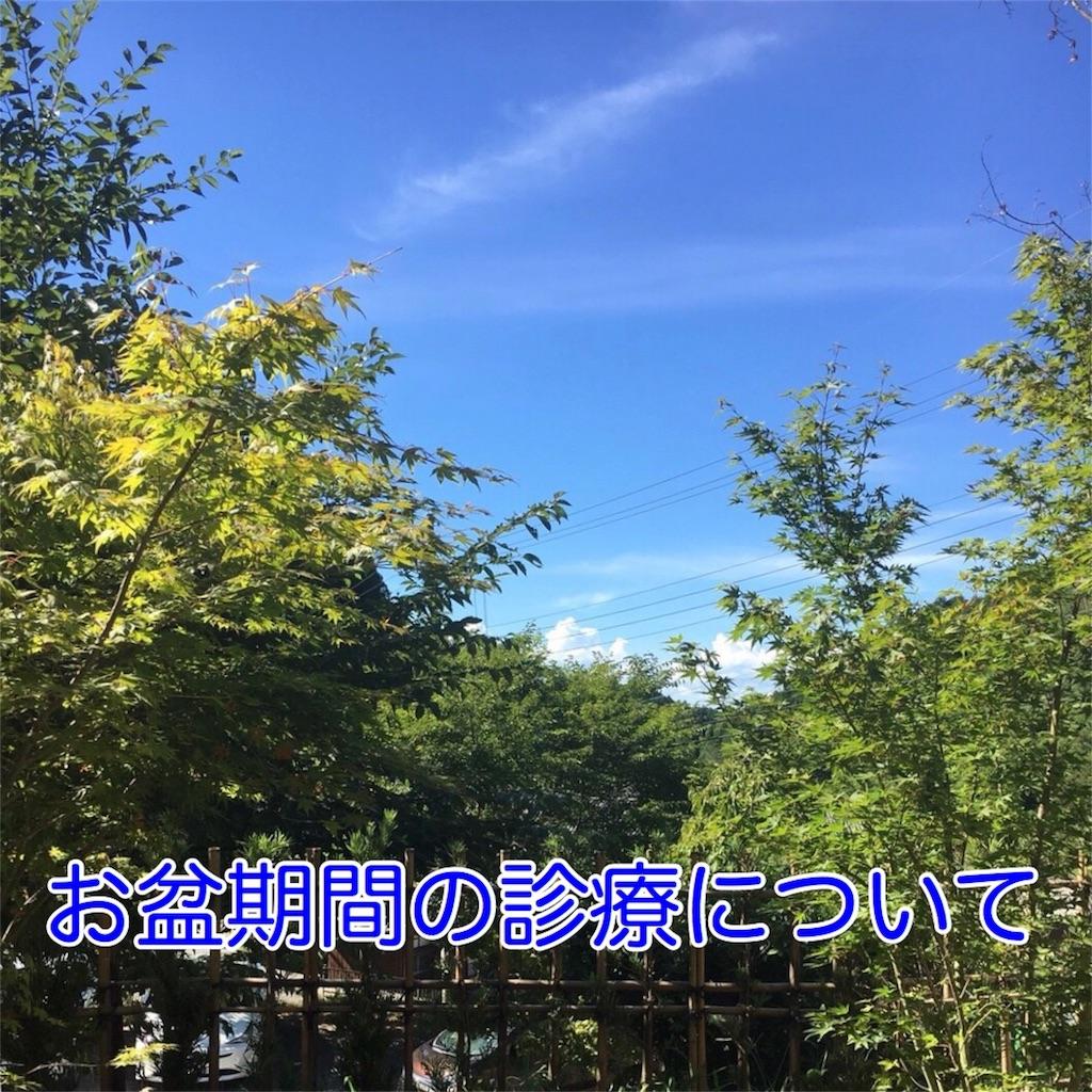f:id:haradashinkyu-seikotsu:20180806121126j:image