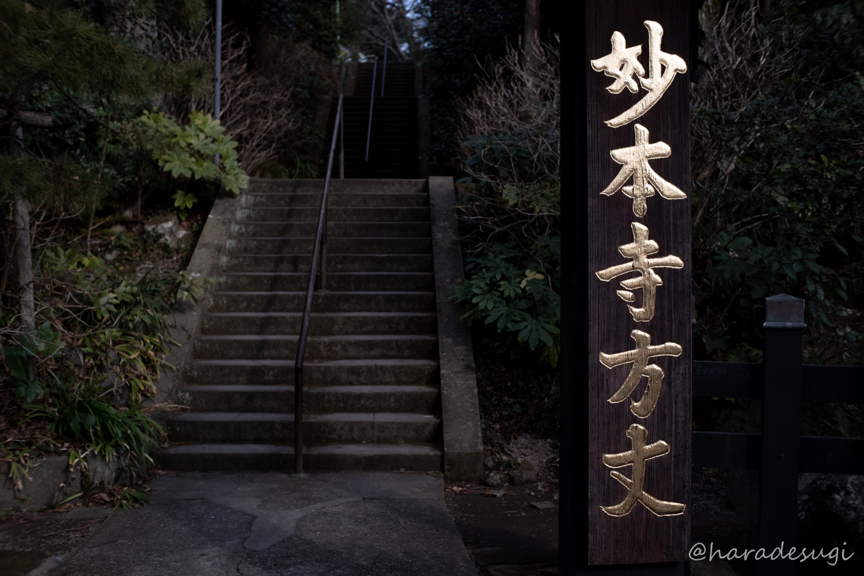 f:id:haradesugi:20190218061543j:plain