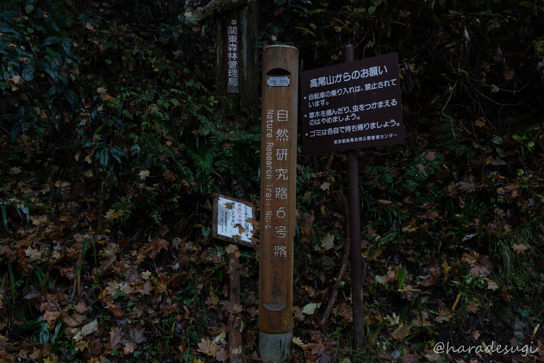 f:id:haradesugi:20191214141816j:plain