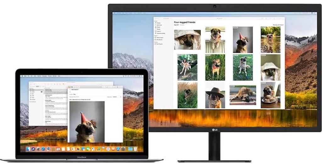 f:id:hardshopper:20200701024614j:image