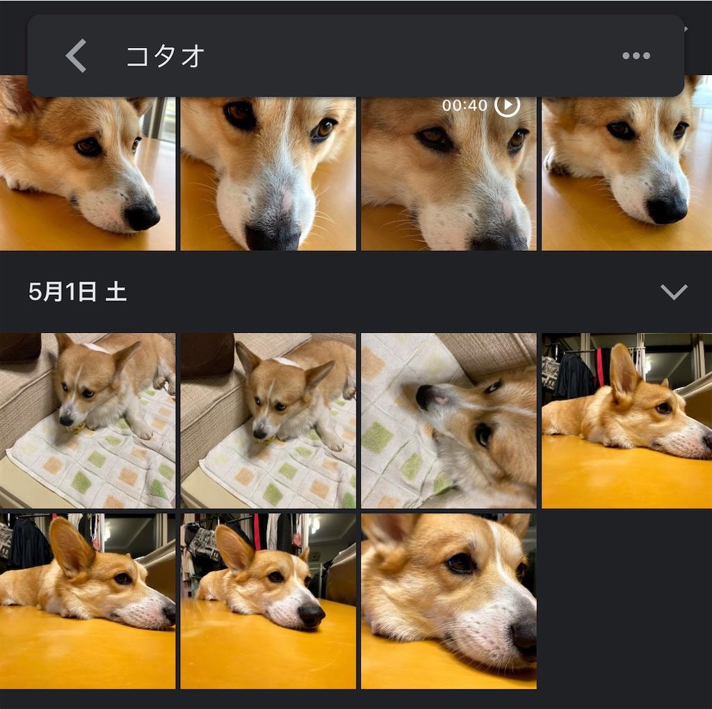 f:id:hardshopper:20210531092016j:image