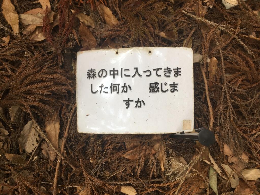 f:id:hare-tetsu:20180516224834j:plain