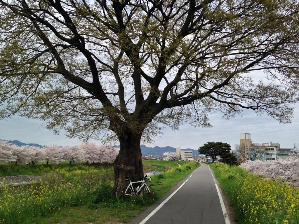 f:id:harehashire:20160325022841j:plain