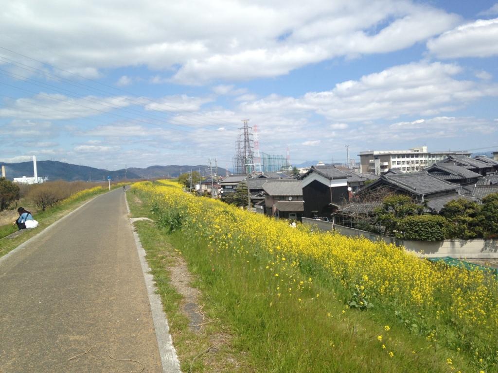 f:id:harehashire:20160405002511j:plain