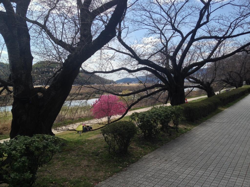 f:id:harehashire:20160405002531j:plain