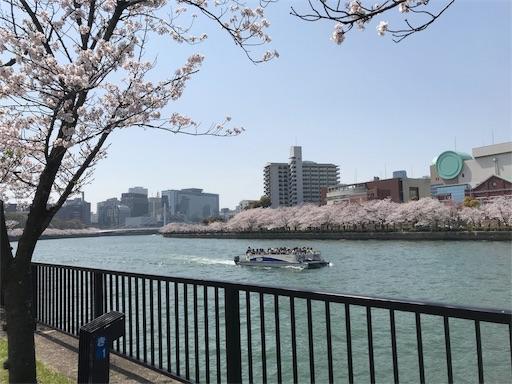 f:id:harehashire:20180330154732j:image