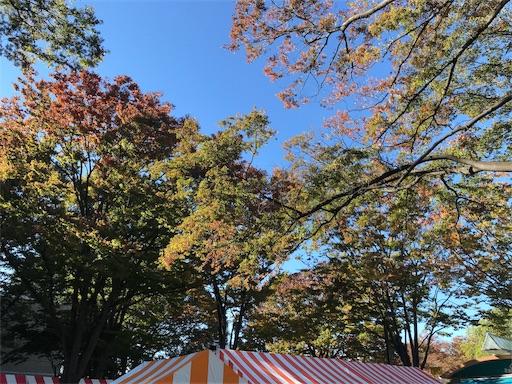 f:id:harehashire:20181102011818j:image