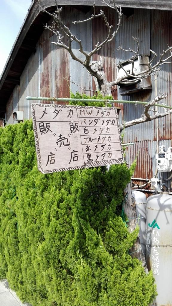 f:id:harikyu-takahashi:20170621125150j:plain