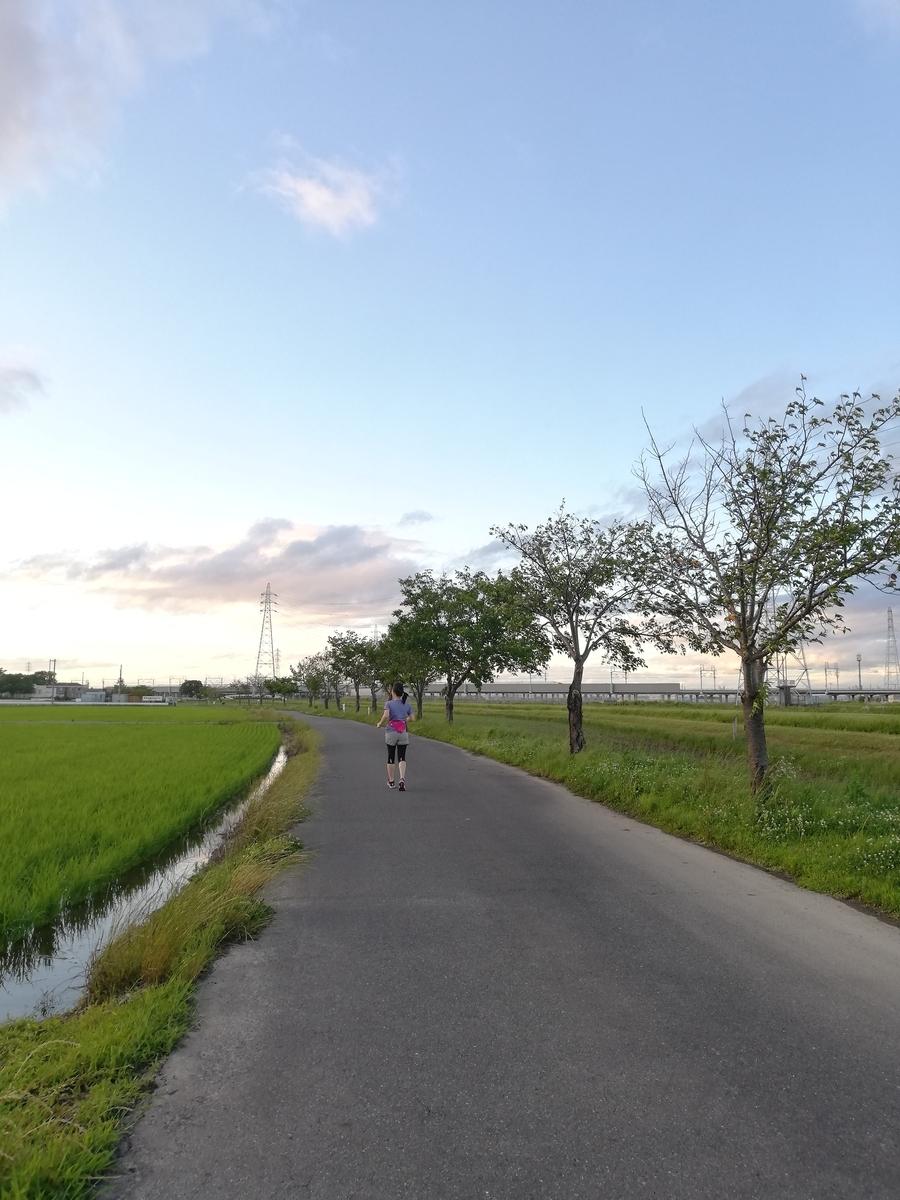 f:id:harikyu-takahashi:20190621223405j:plain