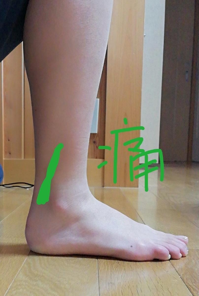 f:id:harikyu-takahashi:20200110201919j:plain