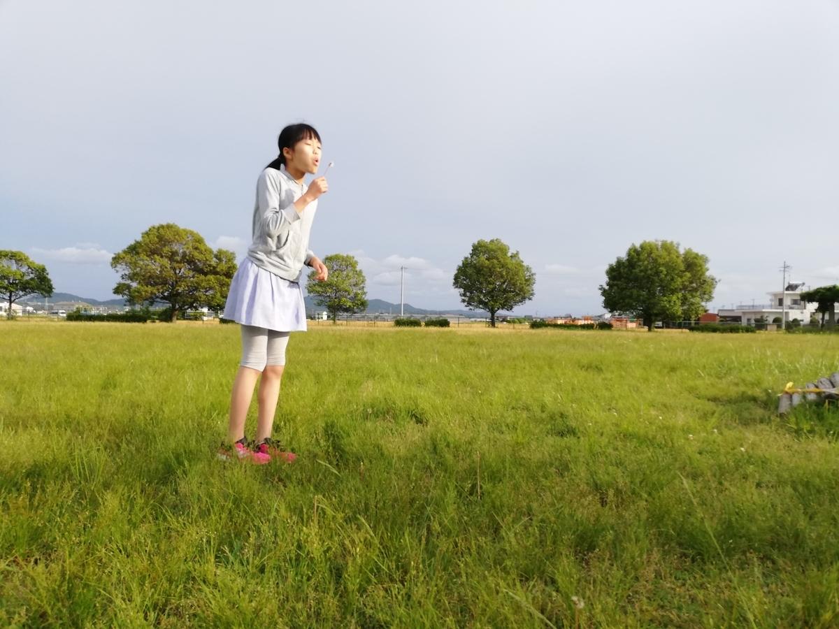 f:id:harikyu-takahashi:20200523233725j:plain