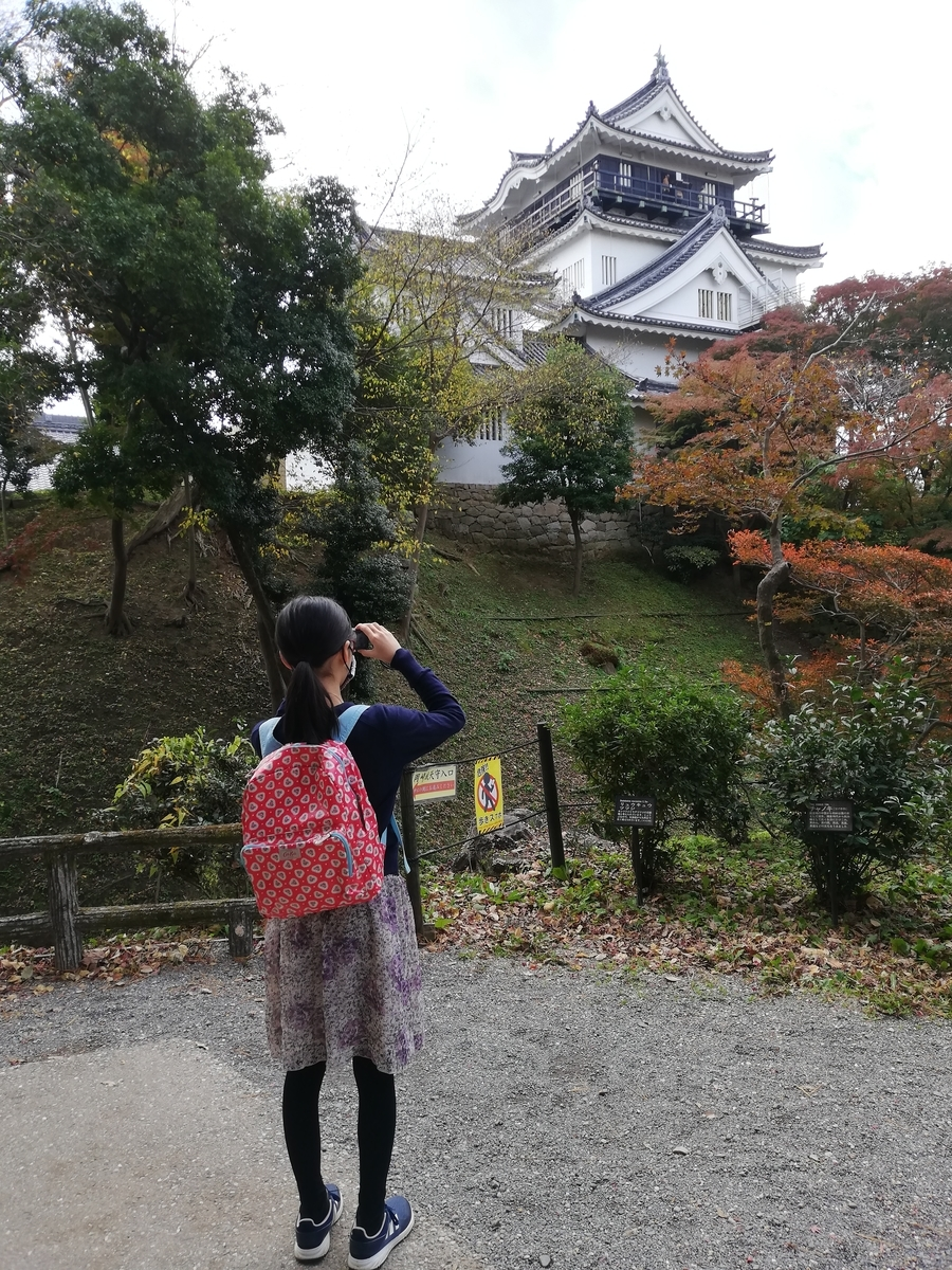 f:id:harikyu-takahashi:20201221202534j:plain