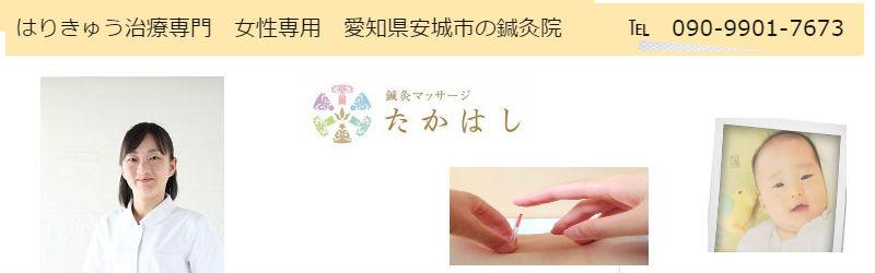 f:id:harikyu-takahashi:20201227233930j:plain