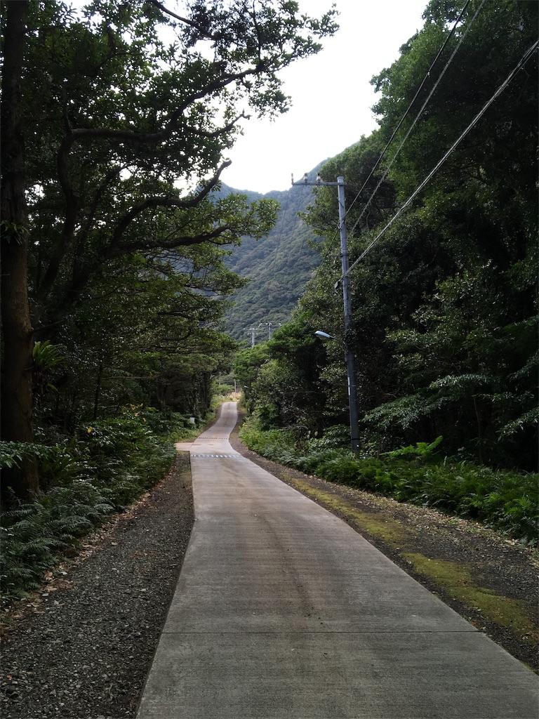 f:id:harimayatokubei:20190206122603j:image
