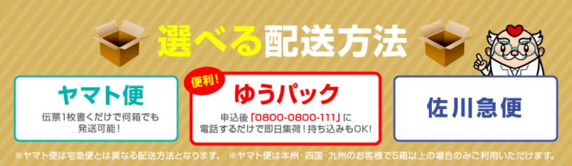 f:id:harinezumi-no-hachiko:20170924123617p:plain