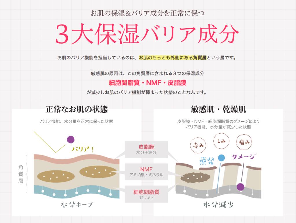 f:id:harinezumi-no-hachiko:20171002065416p:plain
