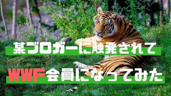 f:id:harinezumi-no-hachiko:20171103124407p:plain