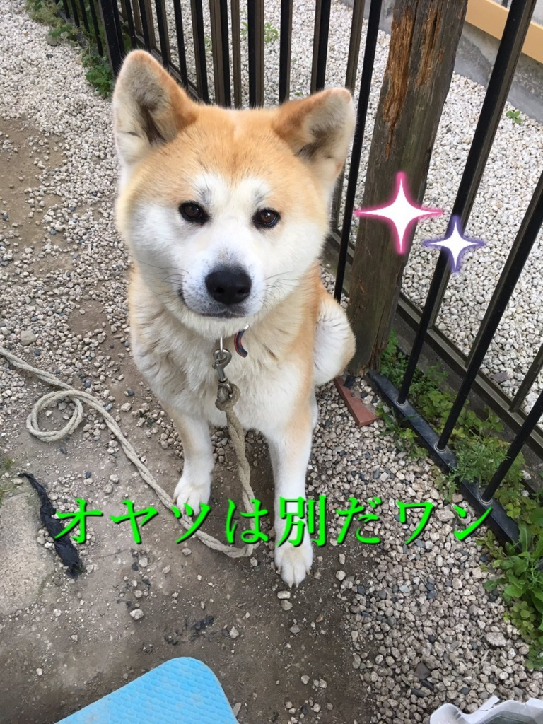 f:id:haro33takoshi:20170521000639j:plain