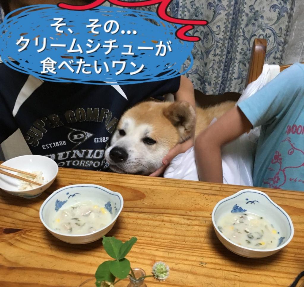f:id:haro33takoshi:20170528002138j:plain
