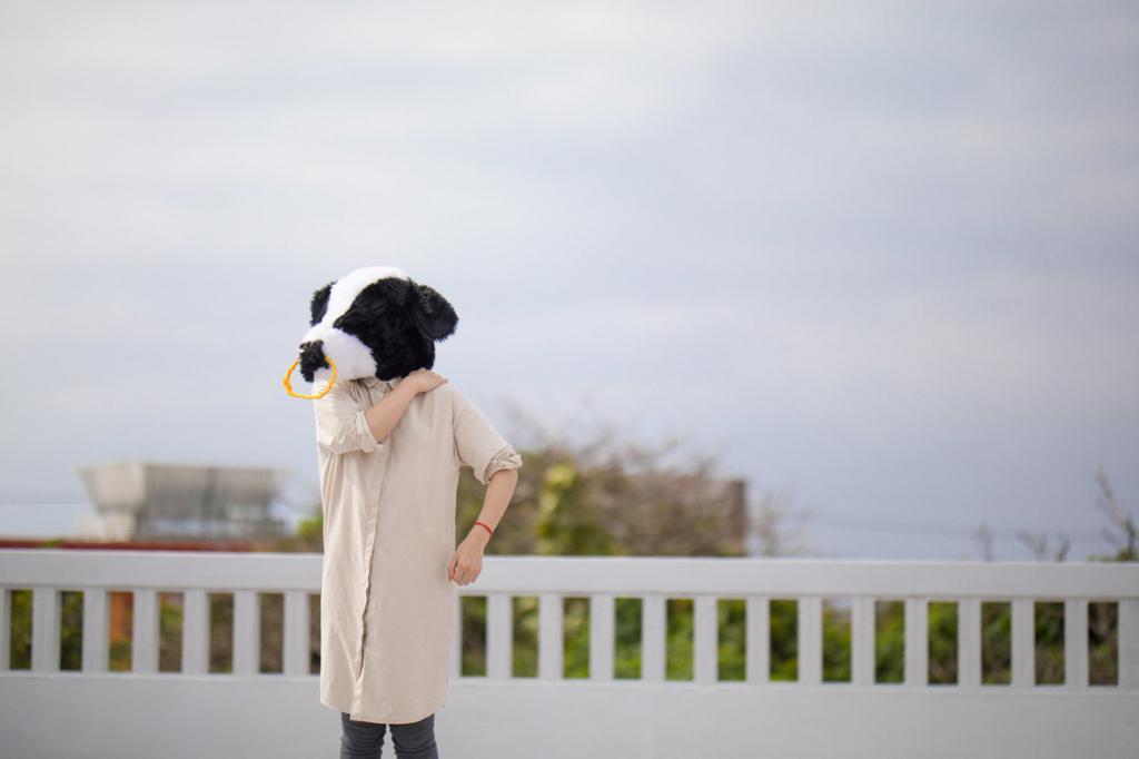 f:id:haro33takoshi:20170803173535j:plain