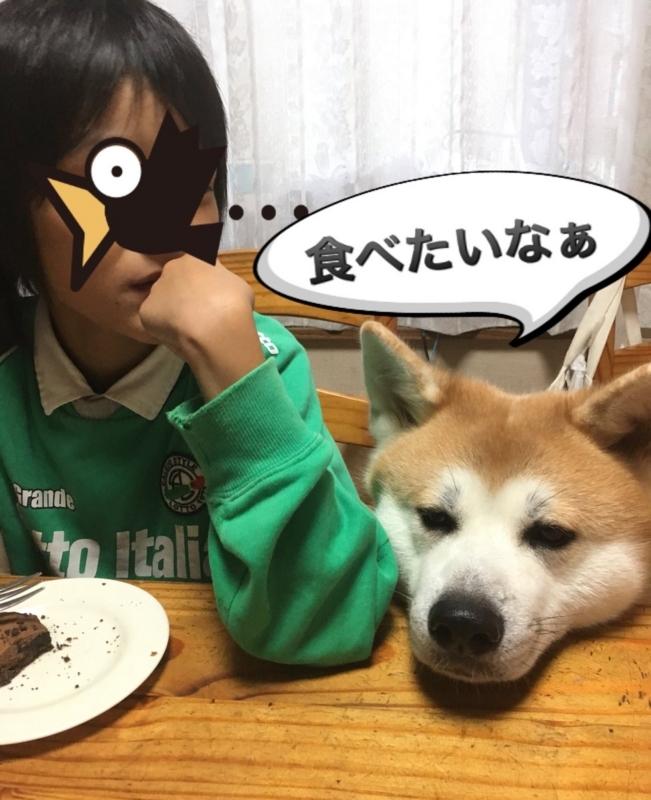 f:id:haro33takoshi:20171019185547j:plain