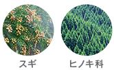 f:id:haru-chance:20180406233956p:plain