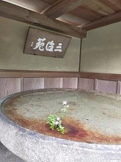 f:id:haru-leo:20201020110631j:plain