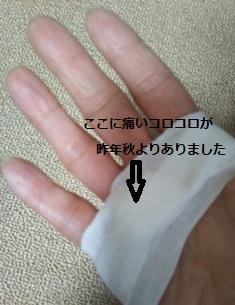 f:id:haru-natu-aki-fuyu:20170411154450j:plain