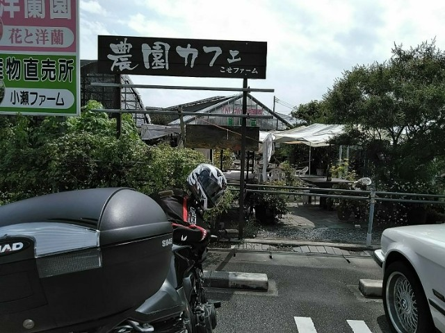 f:id:haru-to-bIke:20190820212724j:image