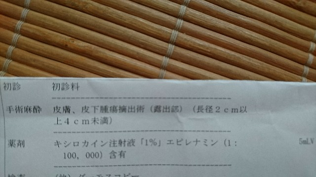 f:id:haru-to-bIke:20191001232046j:image