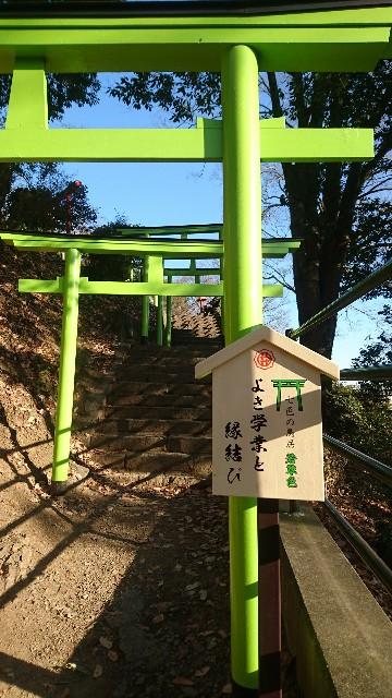 f:id:haru-to-bIke:20200104164646j:image