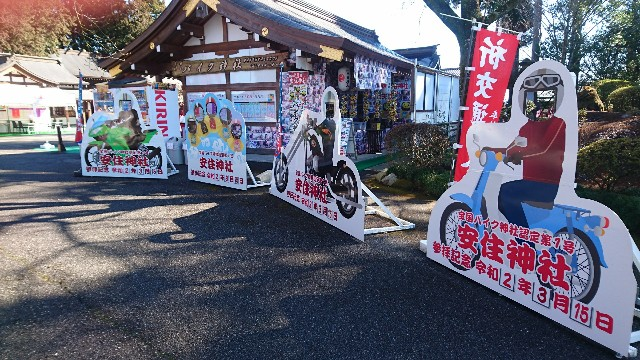 f:id:haru-to-bIke:20200321192029j:image