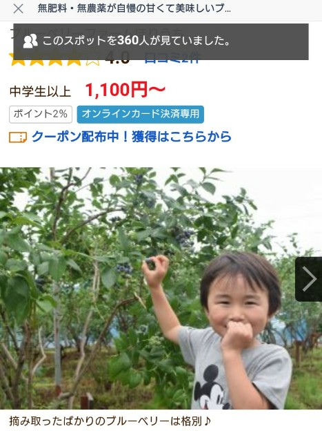 f:id:haru-to-bIke:20200712152023j:image