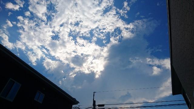 f:id:haru-to-bIke:20200817142151j:image