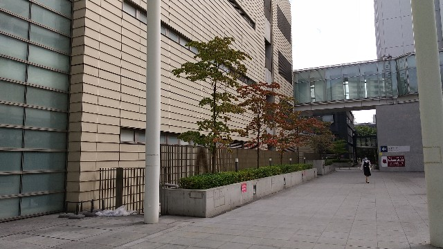 f:id:haru-to-bIke:20201006182153j:image