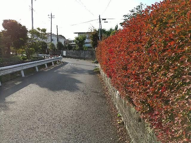 f:id:haru-to-bIke:20201103091833j:image