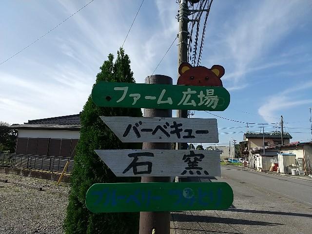 f:id:haru-to-bIke:20201105201120j:image