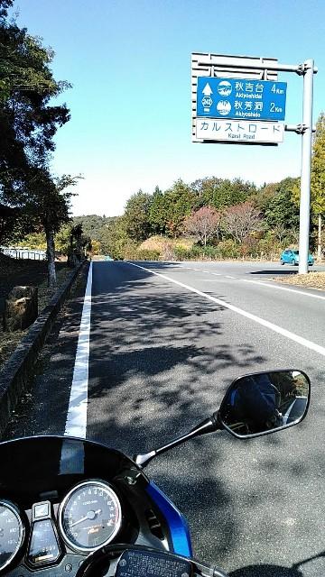 f:id:haru-to-bIke:20201120114436j:image