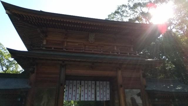f:id:haru-to-bIke:20201205143719j:image